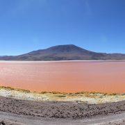 TOUR SALAR DE UYUNI-lagunacolorada